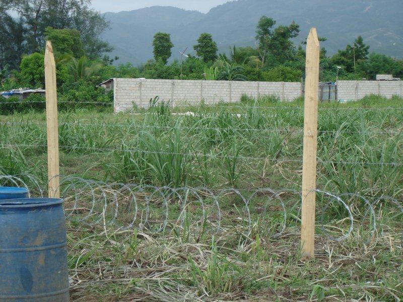 haiti-2010-177