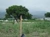 haiti-2010-189